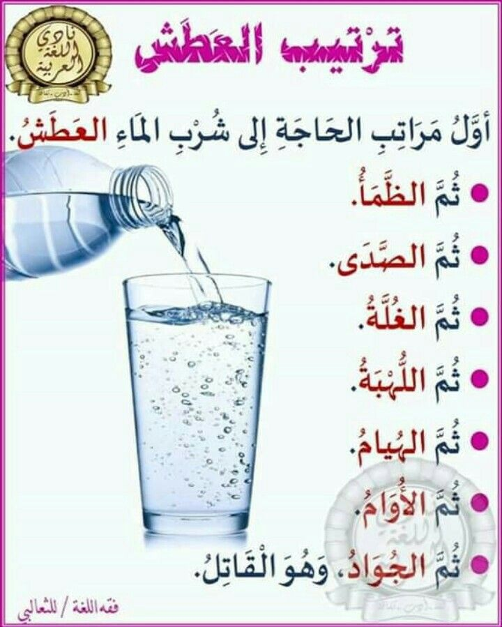 Pin By Ma Nou On روعة اللغة العربية Arabic Language Learning Arabic Arabic Alphabet For Kids