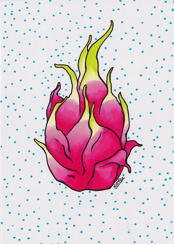 Small Illustration Dragon Fruit Dots (original art, tropical fruit illustration, kitchen wall art, pitaya, magenta, cyan dots, markers)