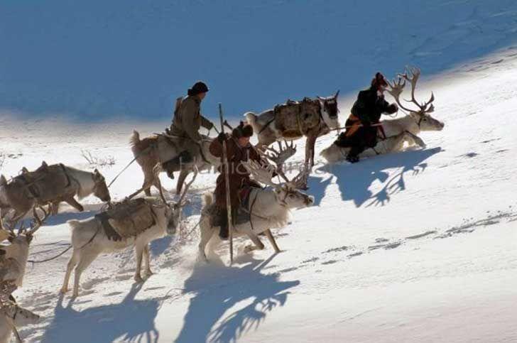mongolia_reindeer_tribe_2