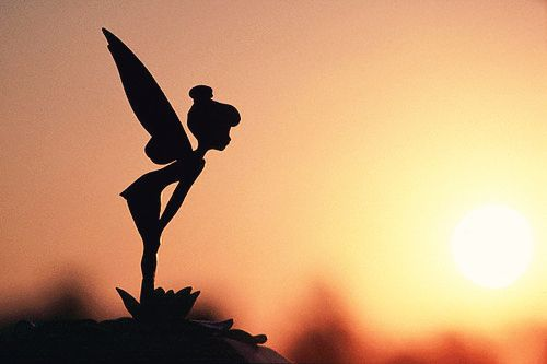 who doesn't love some Tinkerbell and wish for a little pixie dust