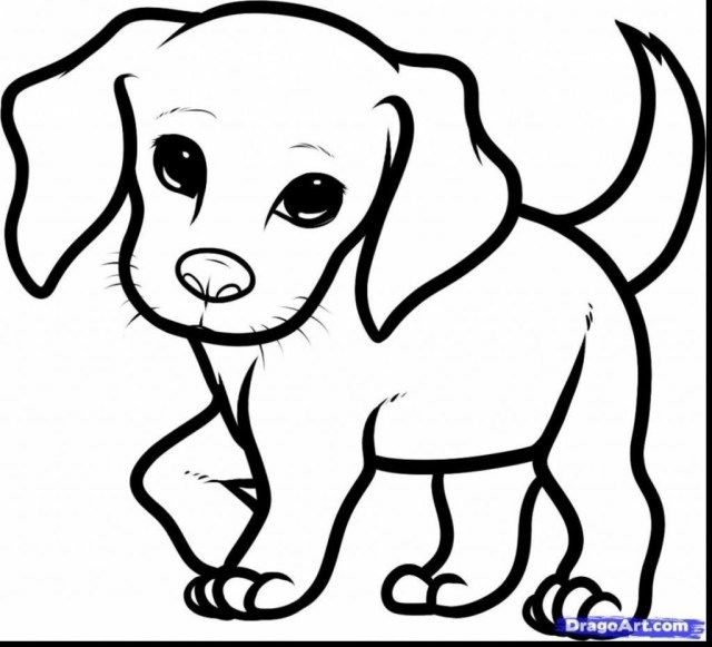 21 Pretty Image Of Puppy Coloring Pages Entitlementtrap Com Dog Drawing Simple Cute Dog Drawing Puppy Coloring Pages