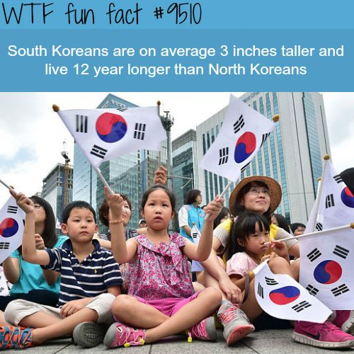 South Koreans vs North Koreans – WTF fun fact (WTF Facts : funny & weird facts) – Denise Shoopman