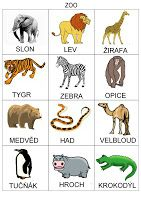 Tak TROCHU ... jiný svět: Globální čtení - zvířata