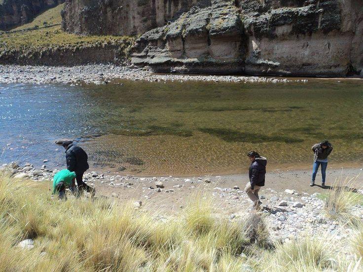 Aguas del  río Huenque, afluente al río Ilave, de la provincia de El Collao. Se caracteriza por la presencia de Chillihuas vegetativas y piedras rodantes decantadas en sus orillas. Piedras conglomeradas, fauna de helechos y algas.  Está ubicado en la comunidad campesina de Chillihuas Grande a 45 kilometros de Ilave hacia Mazocruz, en el distrito de Conduriri, zona alta de El Collao.  Sus aguas  están cristalinas, libre de contaminación.