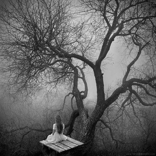 Pavel Tereshkovets (via White Silence – Fubiz™)