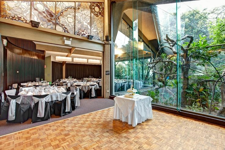 Melbourne Zoo Events. Wedding in Rainforest Room.