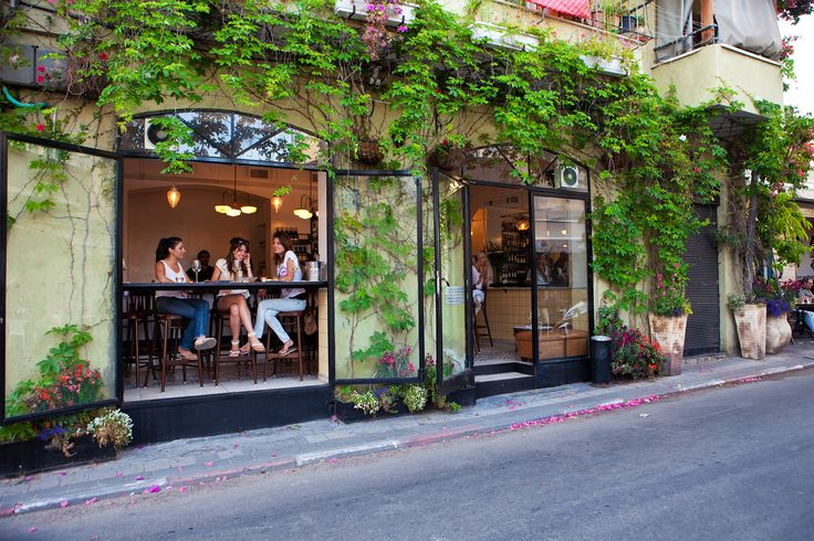 Where To Eat in Tel Aviv's Neve Tzedek Neighborhood | @saltandwind