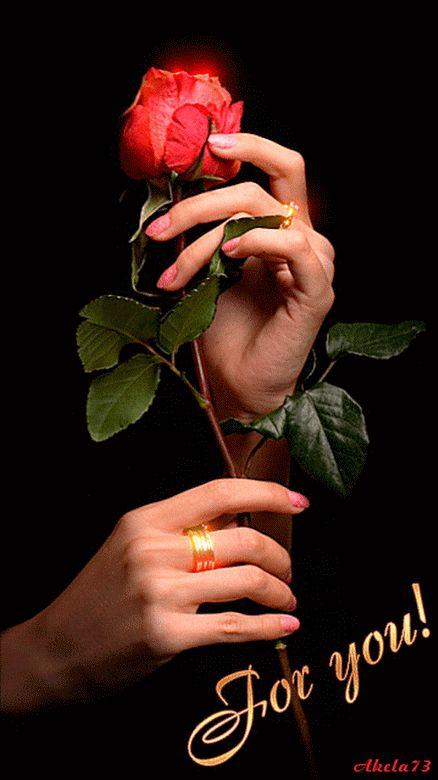 Открытка роза в ладонях