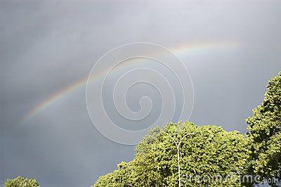 Arco Iris - Descarga De Over 35 Millones de fotos de alta calidad e imágenes Vectores% ee%. Inscríbete GRATIS hoy. Imagen: 29248129