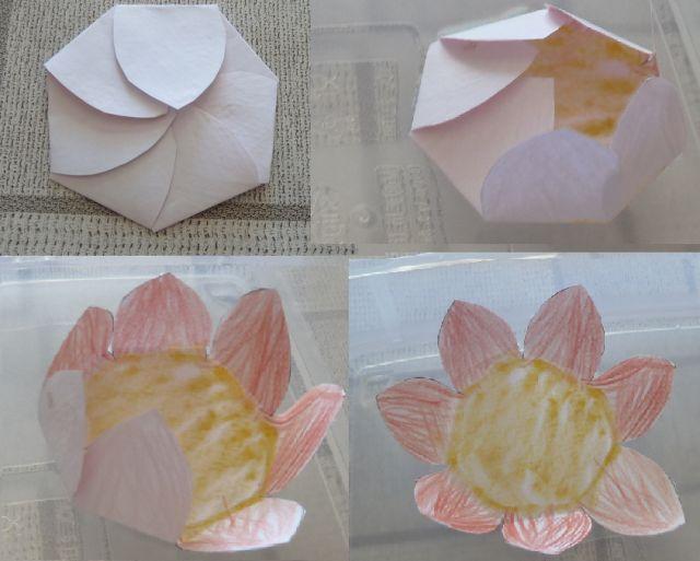 Fleur magique en papier: les pétales s'ouvrent quand on la pose sur l'eau