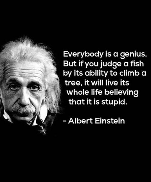 If You Judge A Fish – Great Inspirational Quote by Albert Einstein