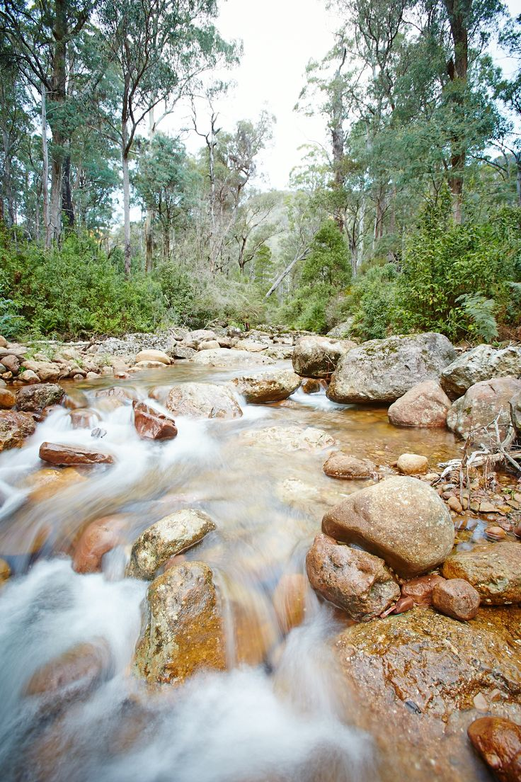 Rivers and streams - The King Valley