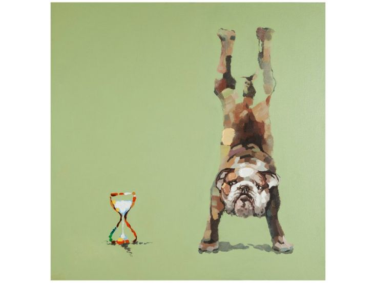 Obraz Doggy — Obrazy Kokoon Design — sfmeble.pl