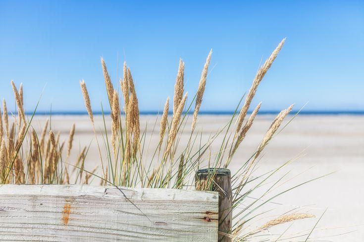https://flic.kr/p/xaWedp | Zomer, zon, zee, strand en rust............. | My Flickr stream much better in Fluidr - click.    Kunst aan de Muur: Werk aan de Muur - click   If you want to see more check Reina Smallenbroek Photography
