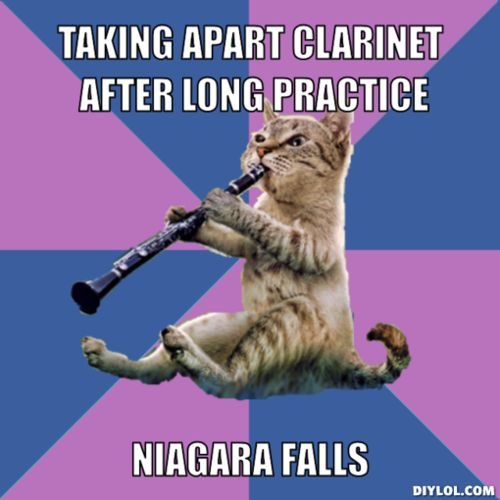 Clarinet Cat, amirite?  Oh spit, how I've learned to tolerate you...