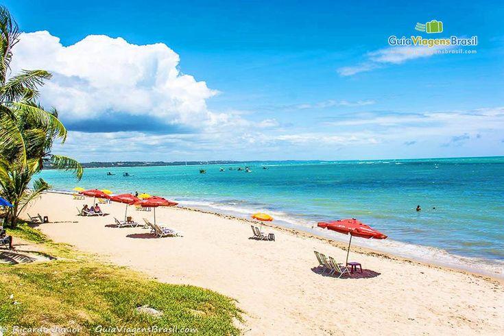 Ponta Verde é como um belo cartão-postal de Maceió. O mar azul esverdeado é margeado por coqueiros e combinam-se com os trechos de areia fofinha, formando o cenário da região.  Veja dicas: http://www.guiaviagensbrasil.com/blog/guia-completo-de-maceio/