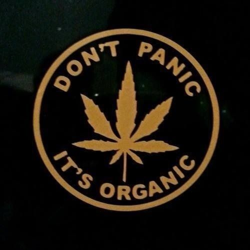 Stoner Quotes Quote hippie drugs weed