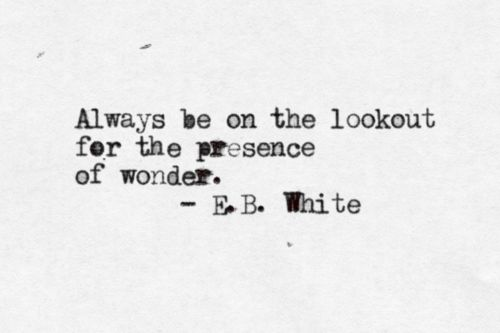 always be on the lookout for the presence of wonder. – b.b. white. #quote #words #inspiration