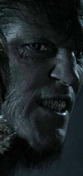 62 best horromoves images on Pinterest   Werewolf, Werewolves and ...
