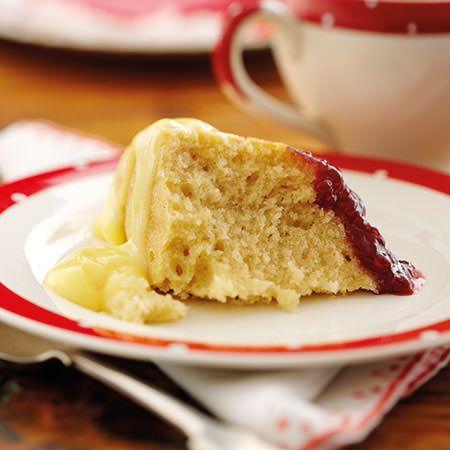 Trex Sponge Cake Recipe