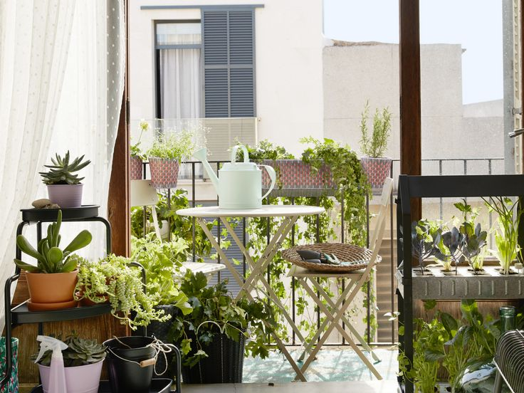 75 best images about jardin on pinterest coins pique - Amenagement petit balcon parisien ...