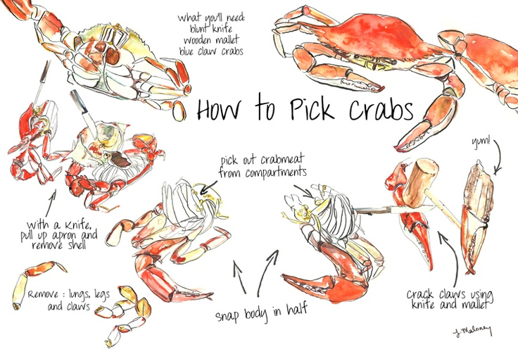 How to pick crabs                                                                                                                                                     More