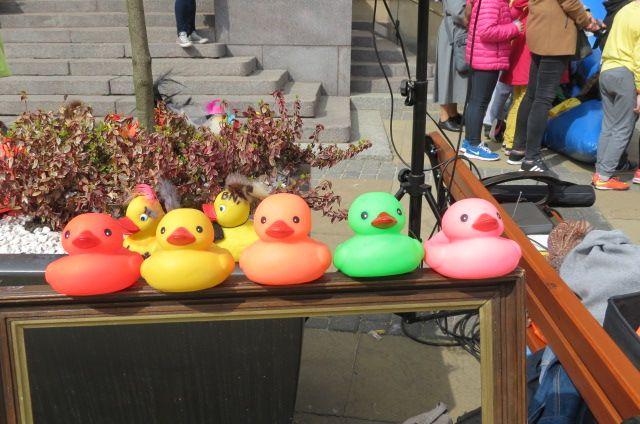 22 maja zapraszamy i zachęcamy do wystawienia własnej kaczki podczas III edycji lubelskiego Wyścigu Kaczek. Więcej informacji na: http://www.nocowanie.pl/iii-lubelski-wyscig-kaczek-2016.html
