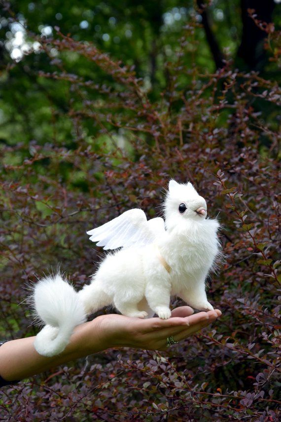 Dove Griffin Etsy In 2020 Cute Fantasy Creatures Animals Cute Creatures