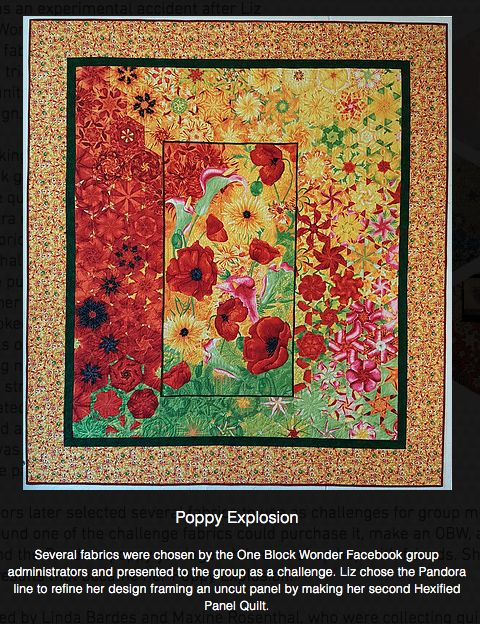 8 Best Hexified Panel Quilts Images On Pinterest Panel