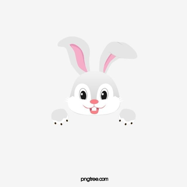 Cartoon Little White Rabbit Rabbit Clipart Little White Rabbit Small Animal Png And Vector With Transparent Background For Free Download Rabbit Clipart Rabbit Illustration Rabbit Vector