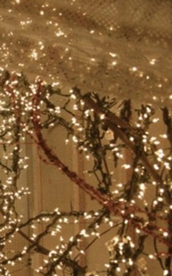 Lit grapevine garland 15 foot with white lights perfect for Decoration with lights