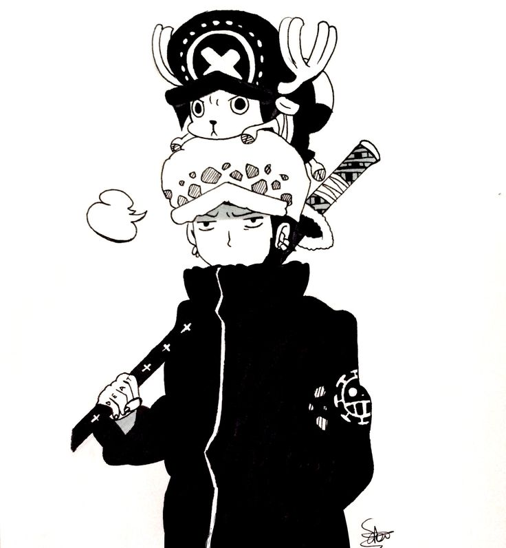 Law and Chopper from One piece