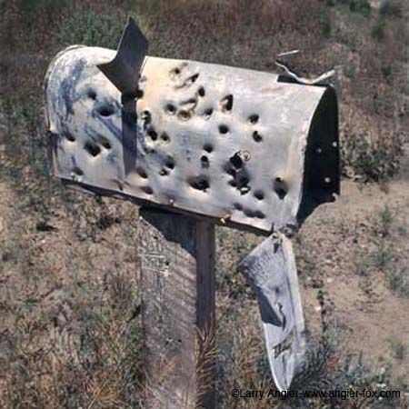 133 best rural mailboxes images on pinterest - Unique mailboxes for rural ...