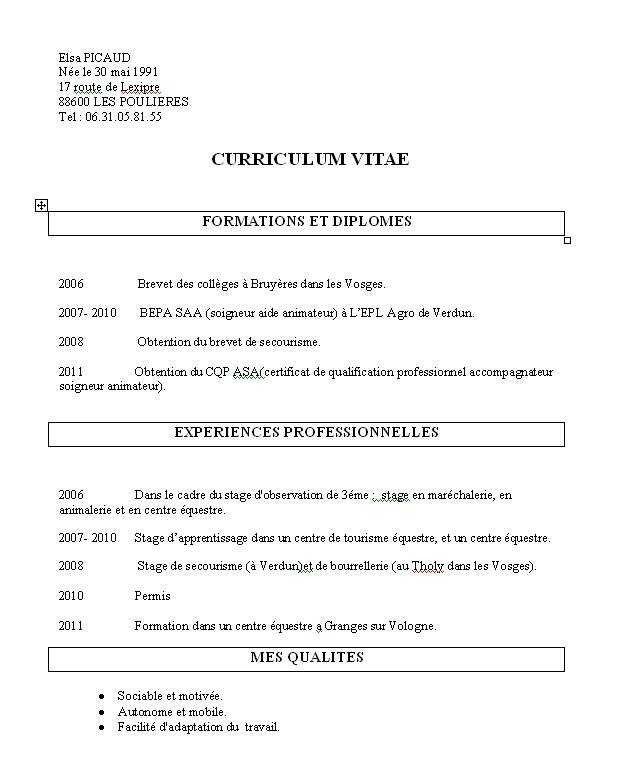 51 Cv D Animateur Bafa Good Company Workbook Design Reference