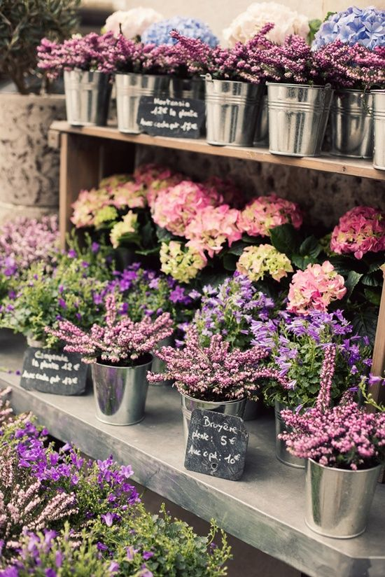 Flowers at a paris market | photo by jamie beck. I want to grow flowers and sell them in my front yard. Love these little buckets of flowers.