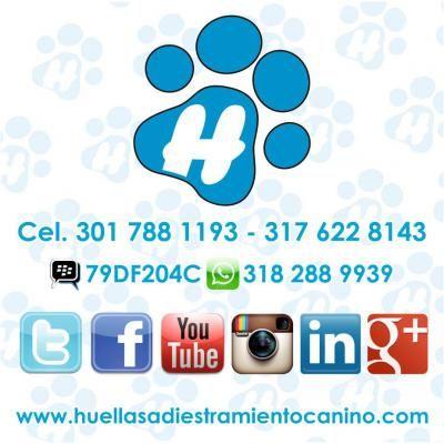 Adiestramiento Canino Huellas http://palmira.anunico.com.co/