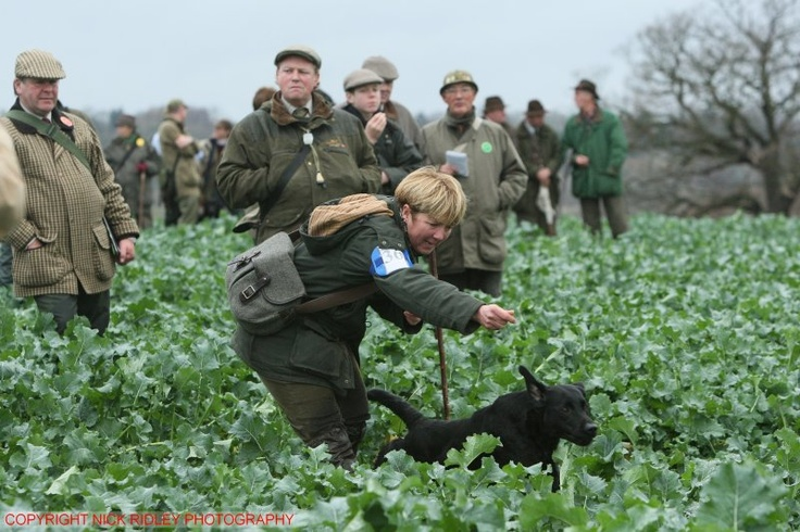 2007 IGL Championship, Windsor Great Park - Miss Bradley (Copyright Nick Ridley Photography)