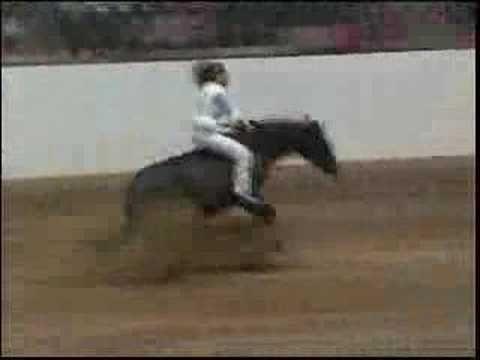 Brideless / bareback reining