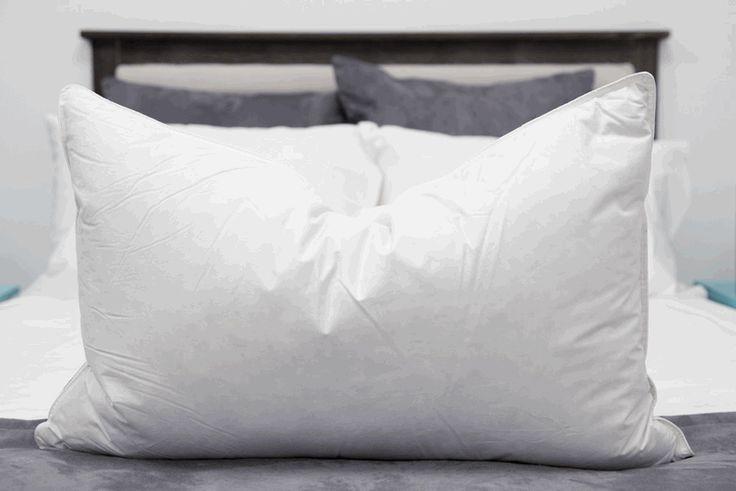 Down Dreams ® Classic Too-Firm Pillow   Pillows.com