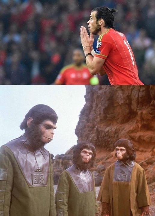 Kumple doradzili Walijczykowi w sprawie fryzury • Gareth Bale zrobił sobie małpią frykę • Zabawne obrazki w piłce nożnej • Zobacz >> #bale #football #soccer #sports #pilkanozna #funny