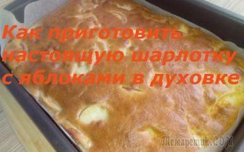 Как приготовить шарлотку с яблоками в духовке.