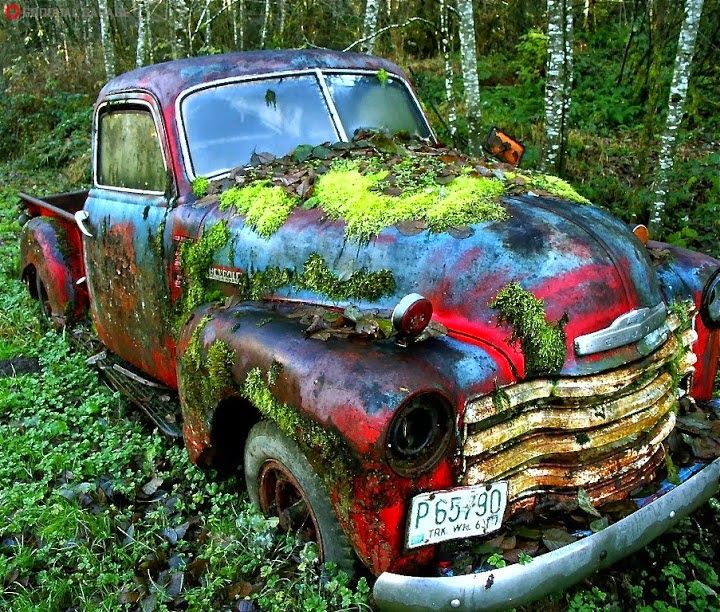 A Chevrolet Truck That's Been Abandoned in the Forest - 16 Abandoned Locations That Are as Breathtaking as They Are Eerie