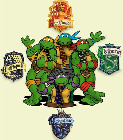 teenage mutant ninja turtles harry potter