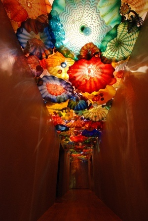 Chihuly hallway in the OKC Art Museum.  I never tire of Chilhuly.