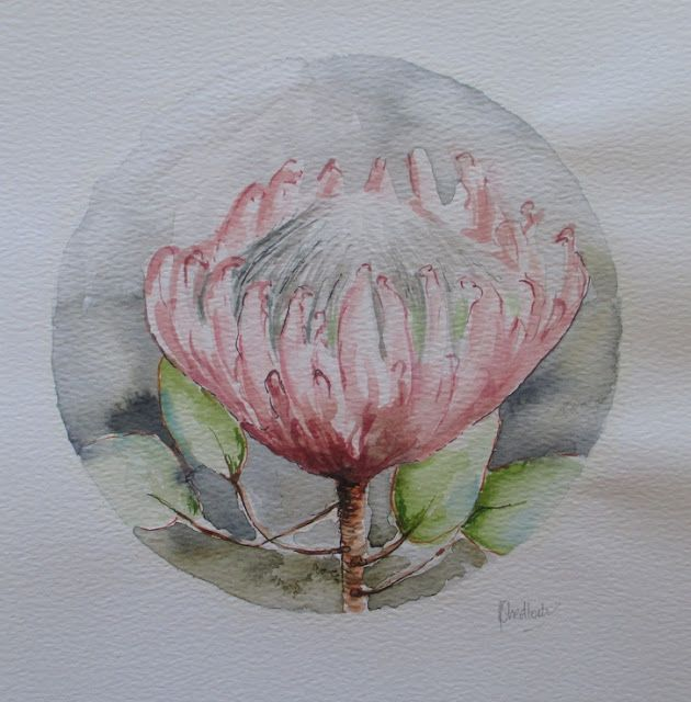 Daily painting 738 Protea on paper