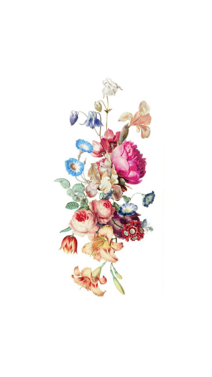 Wild Flowers iPhone 8 wallpaper