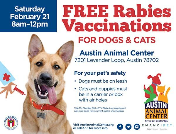 February marks four years with Austin as No-Kill City   AustinTexas.gov - The Official Website of the City of Austin
