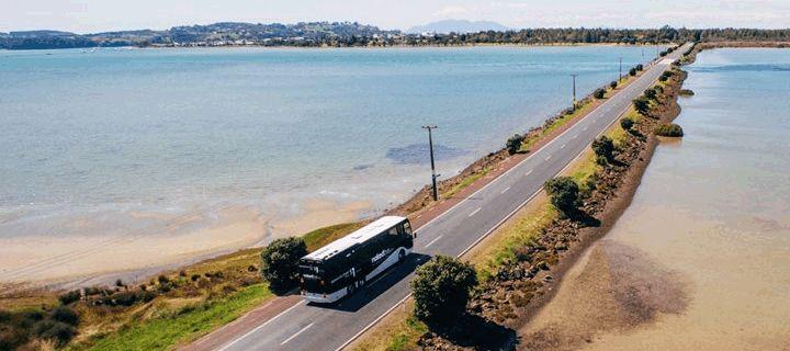 Nakedbus « Nakedbus.com – Cheap bus tickets | NZ bus fares from $1 | NZ's national low cost bus network