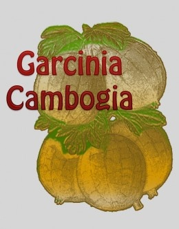 Garcinia Cambogia extract is the latest craze in weight loss community. A fruit that grows in Southeast Asia mainly that researchers discovered and proved its potential to aid weight loss without side effects. http://quickweightlosschannel.com/garcinia-cambogia-extract-weight-loss-supplement-review/