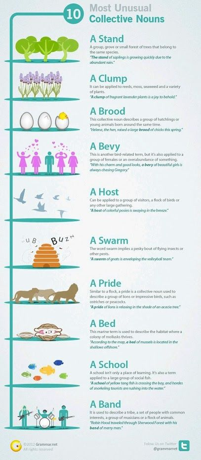 Some interesting collective nouns.